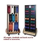 Hausmann Combo Weight / Dumbbell Mobile Rack
