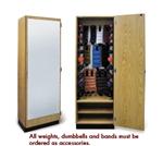 Hausmann Mirrored Storage Cabinet