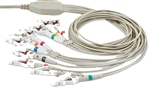 Nasiff 10-Lead EKG Patient Cable